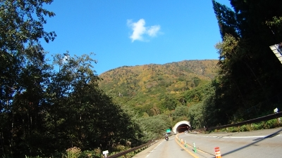 安房トンネルの紅葉
