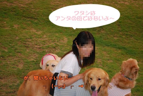 2014 07 19 2 (20)