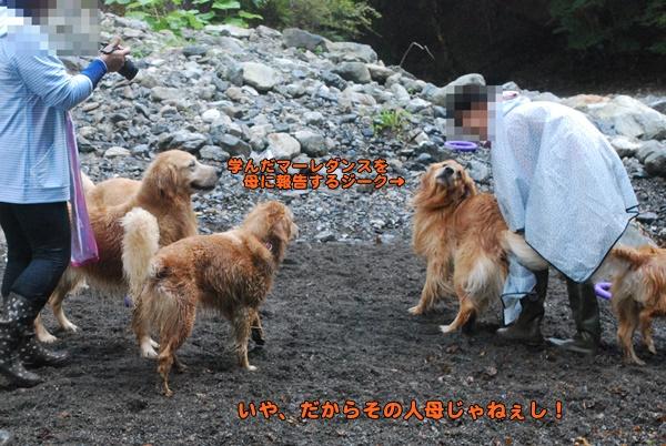 2014 09 23 1 (7)
