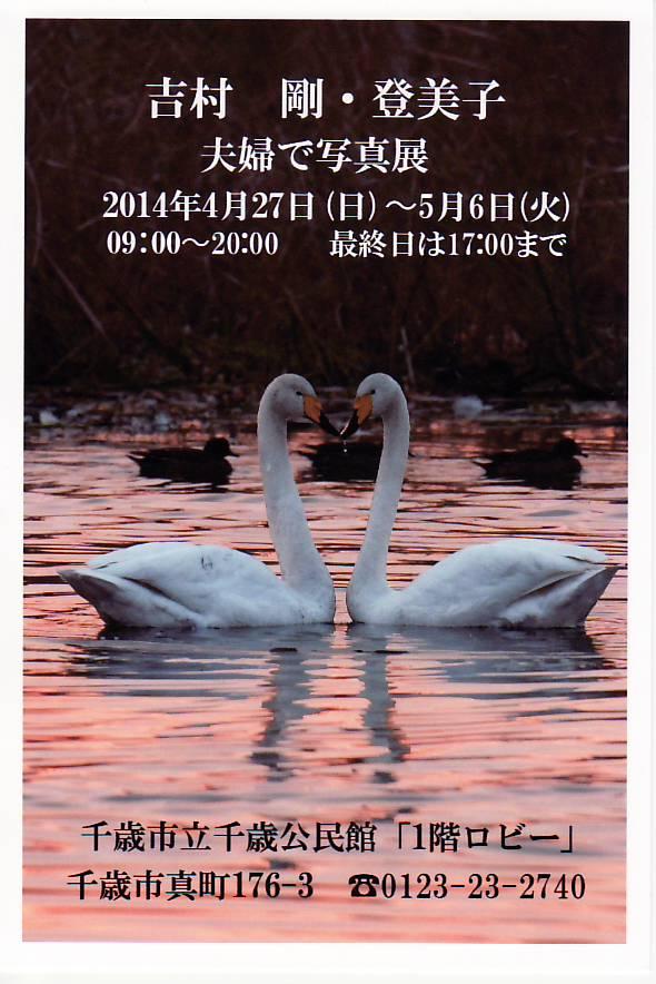 140411吉村夫妻写真展