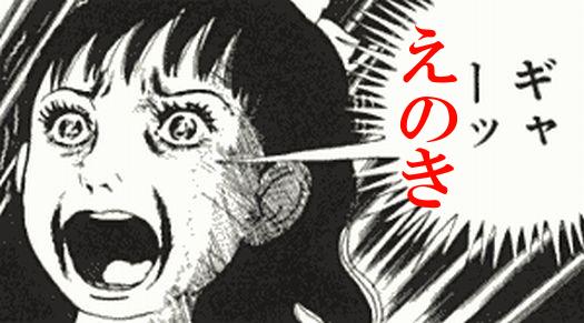 kazuoenoki.png