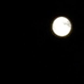 皆既月食201410