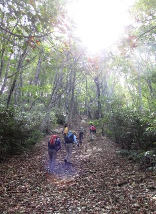 岡山県立森林公園 012-001