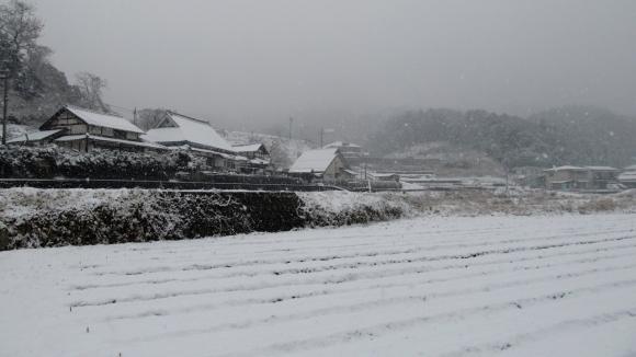 雪の田舎風景