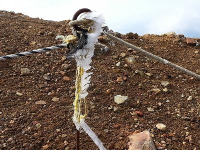 雌阿寒岳山頂付近エビのシッポ(10月)
