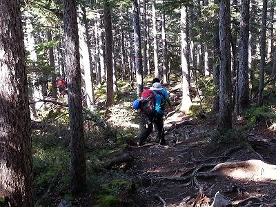 雌阿寒岳野中温泉コース登山口付近1