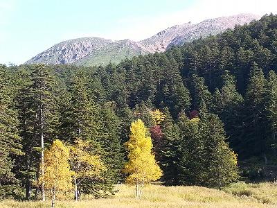 雌阿寒岳野中温泉コース登山口付近3