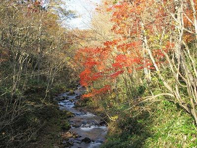 伏見岳紅葉(10月)