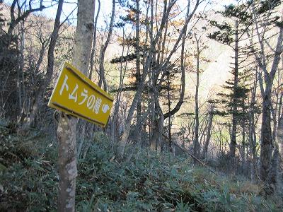伏見岳トムラの滝