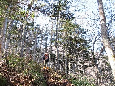伏見岳登山道1