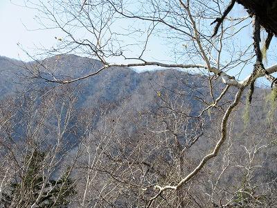 伏見岳登山道より妙敷山