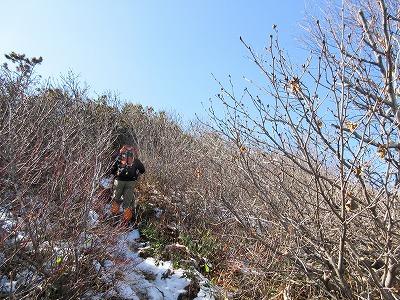 伏見岳登山道5