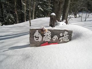 白藤の滝看板2
