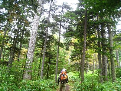 湖畔コース登山道1