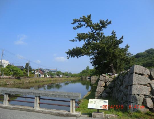 太閤ヶ原(お濠)