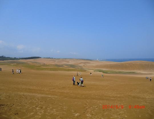 鳥取砂丘②