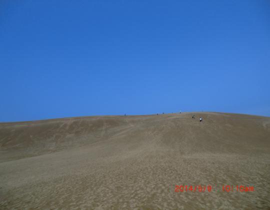 鳥取砂丘⑦