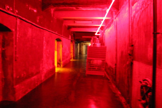 サドヤ 赤い部屋