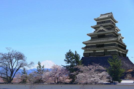 甲府城 桜 富士山