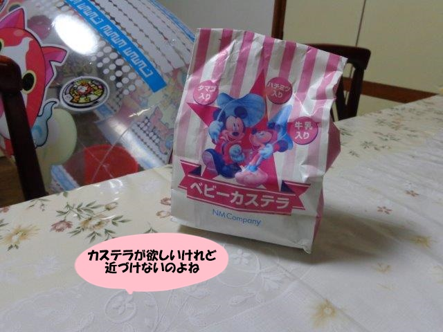 DSC01761.jpg