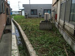 s-草刈草刈 (4)