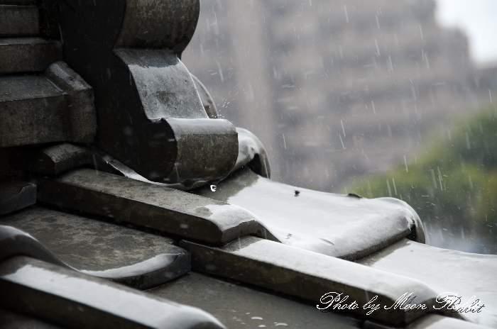 雨 愛媛県西条市神拝