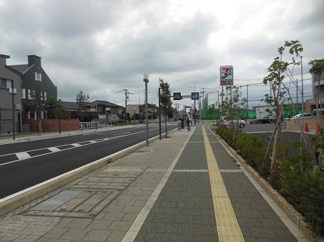 20140831kurakka3.jpg