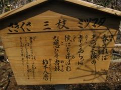 hurusato140316-104.jpg