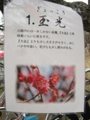 oomiyadaini140223-107.jpg