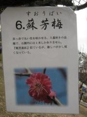 oomiyadaini140223-109.jpg