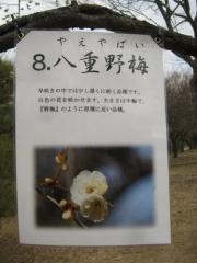 oomiyadaini140223-110.jpg