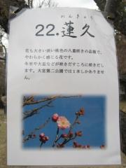 oomiyadaini140223-112.jpg