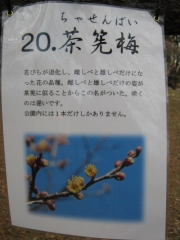 oomiyadaini140223-113.jpg
