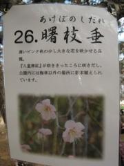 oomiyadaini140223-115.jpg