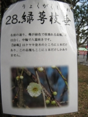 oomiyadaini140223-116.jpg