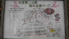 oomiyadaini140223-130.jpg