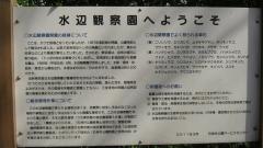 shakuzii140329-116.jpg