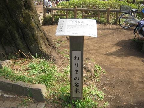 shakuzii140329-119.jpg