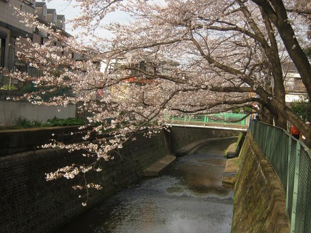 simizuyama140329-115.jpg