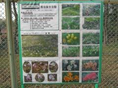 simizuyama140329-118.jpg