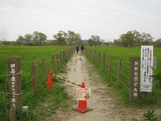 tazimagahara140419-202.jpg
