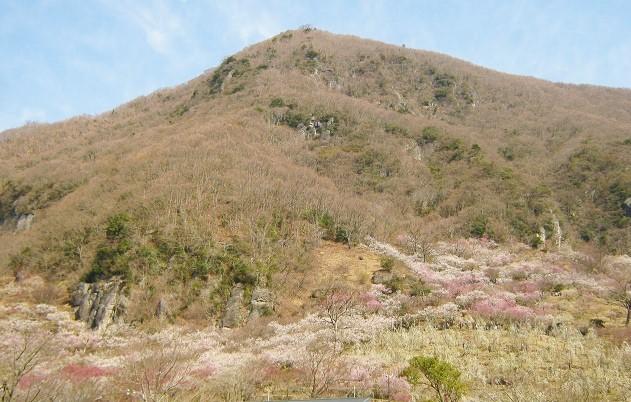 yugawara140309-103.jpg
