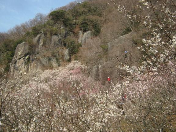 yugawara140309-112.jpg