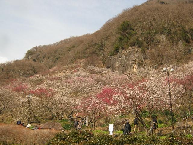 yugawara140309-122.jpg