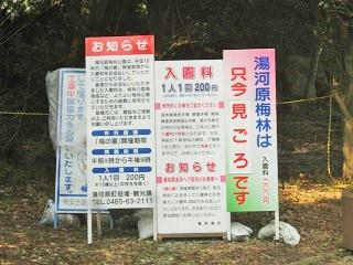 yugawara140309-201.jpg