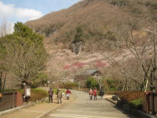 yugawara140309-203.jpg