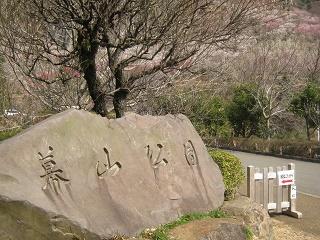yugawara140309-204.jpg