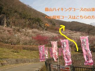 yugawara140309-205.jpg