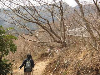 yugawara140309-228.jpg