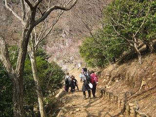 yugawara140309-230.jpg